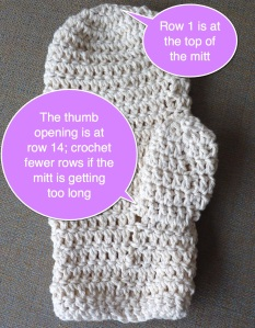 Crochet bath mitt